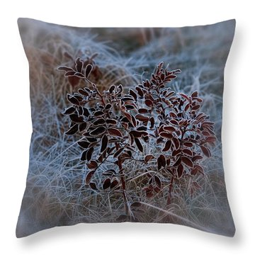 Frosted Rugosa Throw Pillow by Susan Capuano