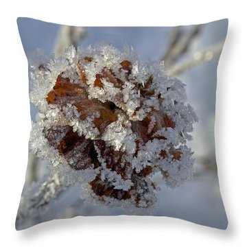 Frosted Willow Rose Throw Pillow by Cathy Mahnke