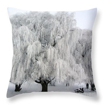 Frosted Willow Trees Throw Pillow