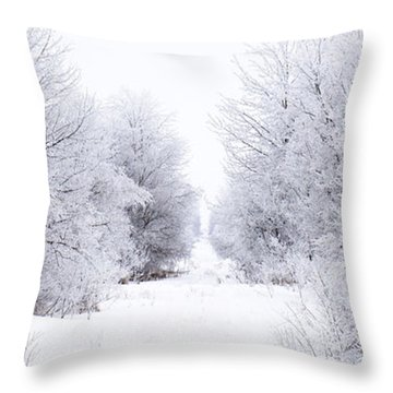 Frosted Woodland Path Throw Pillow