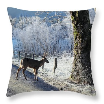 Frosty Cades Cove II Throw Pillow