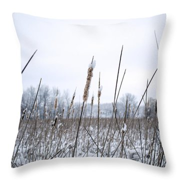 Frosty Cattails Throw Pillow