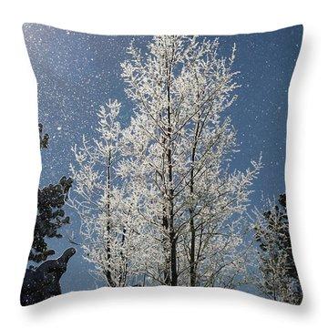 Frosty Colorado Aspen Throw Pillow