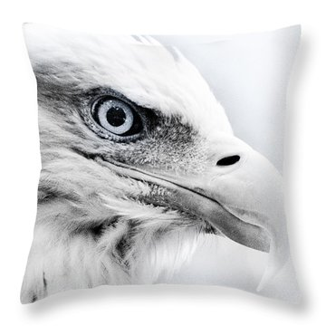 Frosty Eagle Throw Pillow by Shane Holsclaw