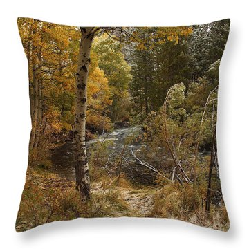 Frosty Fall  Morning Throw Pillow