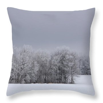 Frosty Farm Fields Throw Pillow