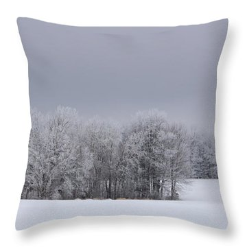 Frosty Farm Fields Throw Pillow