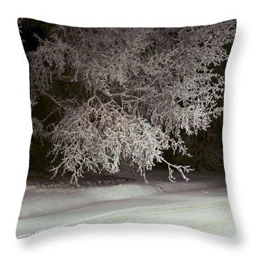 Frosty Feline Throw Pillow
