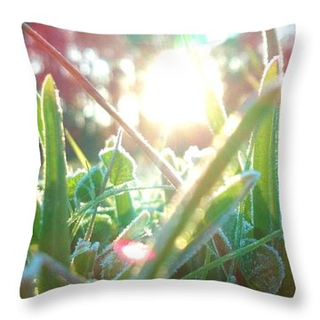Frosty Flare Throw Pillow