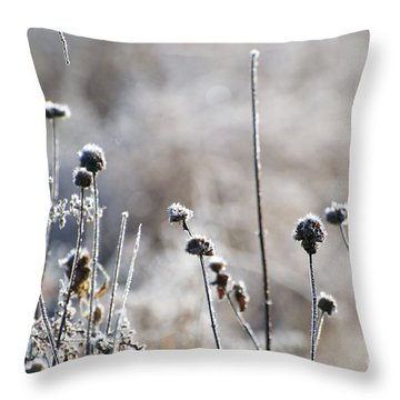 Frosty Flowers Throw Pillow