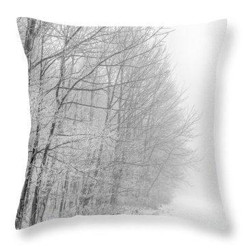 Frosty Forest Frontier Throw Pillow