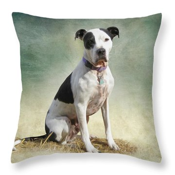 Frosty Throw Pillow by Julie Wagaman