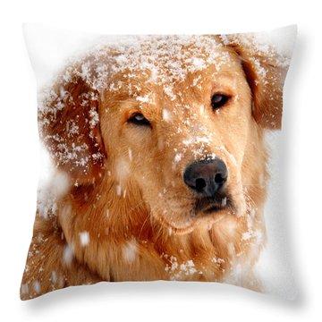 Frosty Mug Throw Pillow by Christina Rollo