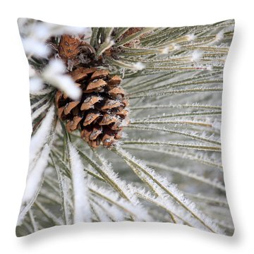Frosty Norway Pine Throw Pillow