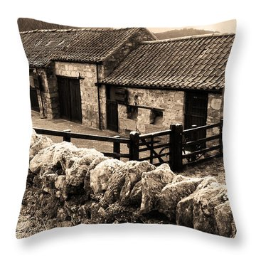 Frosty Outlook Throw Pillow