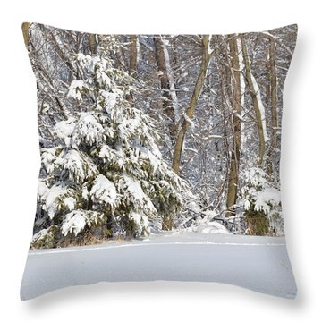 Throw Pillow featuring the photograph Frosty Pine by Dacia Doroff