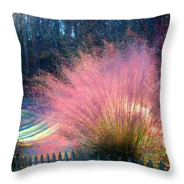 Frosty Scene Throw Pillow by Kathryn Meyer