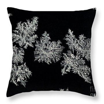 Frosty Snowflakes Throw Pillow by Mariola Bitner