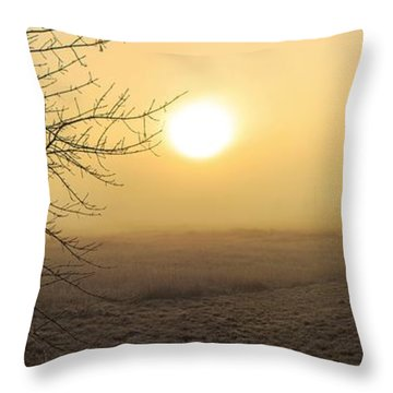 Frosty Sunrise Throw Pillow