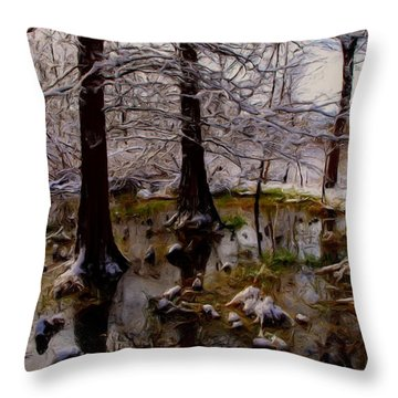 Frosty Throw Pillow by Tom Druin