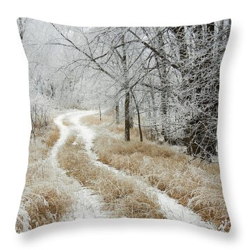 Throw Pillow featuring the photograph Frosty Trail 2 by Penny Meyers