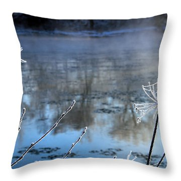 Frosty Webs And Weeds Throw Pillow by Hanne Lore Koehler