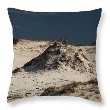 Frosty White Dunes Throw Pillow by Adam Jewell