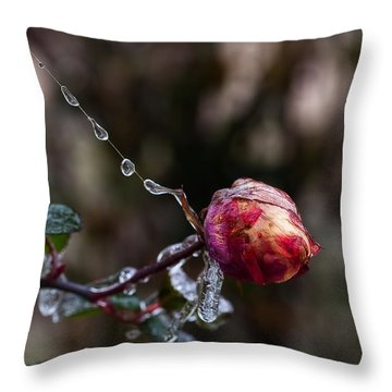 Froze Rose Throw Pillow
