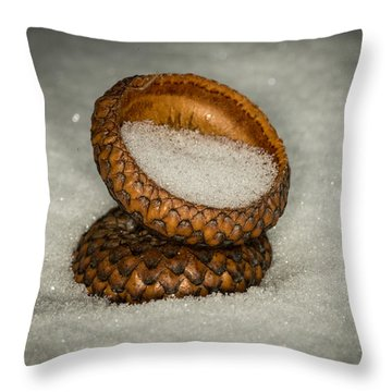 Frozen Acorn Cupule Throw Pillow