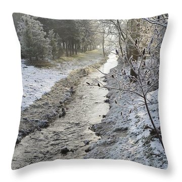 Throw Pillow featuring the painting Frozen Air by Felicia Tica
