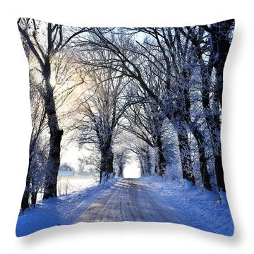 Frozen Alley Throw Pillow