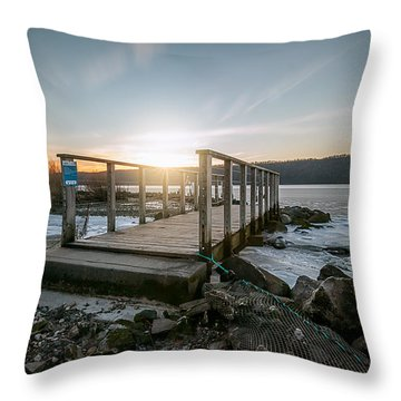Throw Pillow featuring the photograph Frozen by Anthony Fields