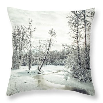 Frozen Creek At Sunset Throw Pillow