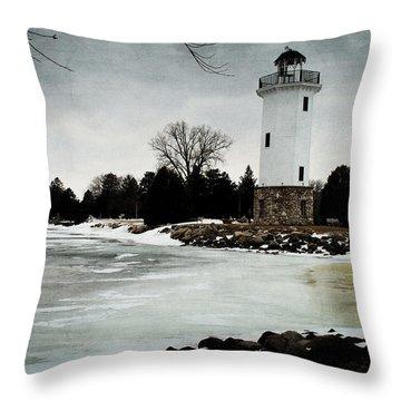 Frozen Entry 3 - De Throw Pillow by Janice Adomeit