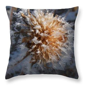 Frozen Fog Throw Pillow by Kae Cheatham