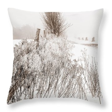 Frozen Fog On A Hedgerow - Bw Throw Pillow