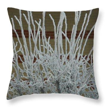 Frozen Fog On Bush Throw Pillow
