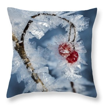 Frozen Food Throw Pillow by Ted Raynor
