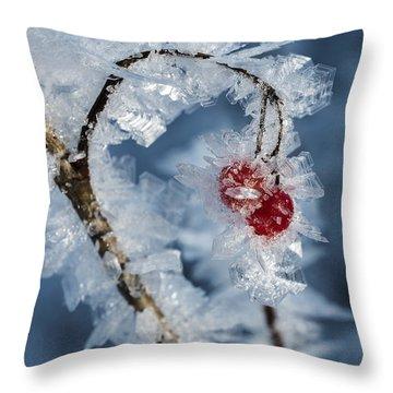 Frozen Food Throw Pillow