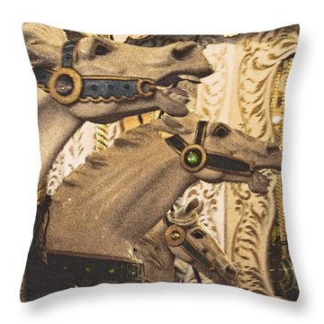 Throw Pillow featuring the photograph Frozen Gaits by Jani Freimann