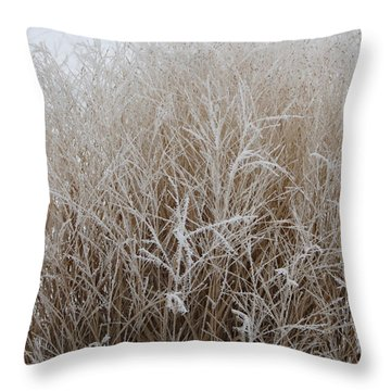 Frozen Grass Throw Pillow by Debbie Hart
