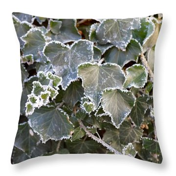 Throw Pillow featuring the painting Frozen Hedera Helix 2 by Felicia Tica