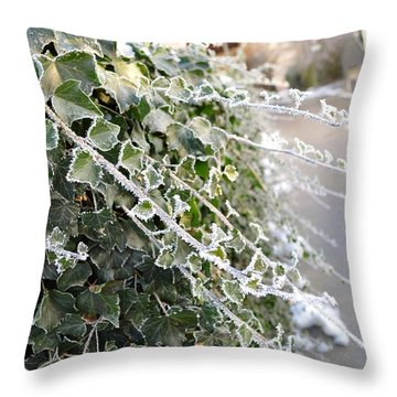 Throw Pillow featuring the painting Frozen Hedera Helix by Felicia Tica