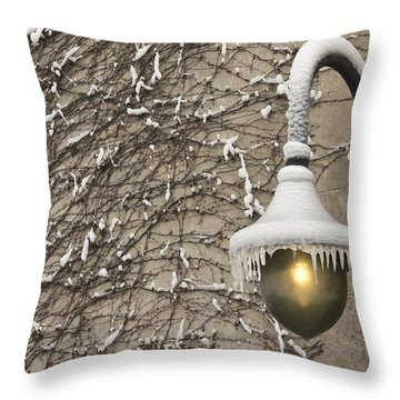 Frozen Illumination Throw Pillow