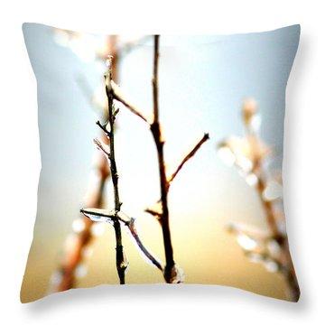 Frozen In Light Throw Pillow