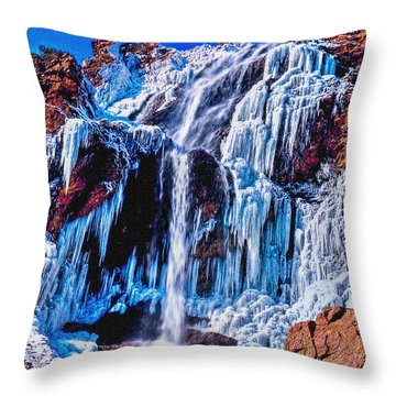 Frozen In Motion Throw Pillow by Bob and Nadine Johnston