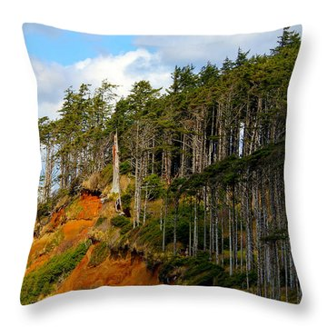 Throw Pillow featuring the photograph Frozen In Time by Jeanette C Landstrom