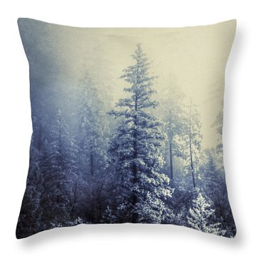Frozen In Time Throw Pillow by Melanie Lankford Photography