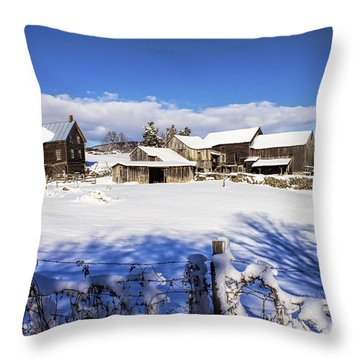 Frozen In Time One  Throw Pillow