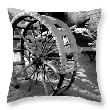 Throw Pillow featuring the photograph Frozen In Time by Steven Milner